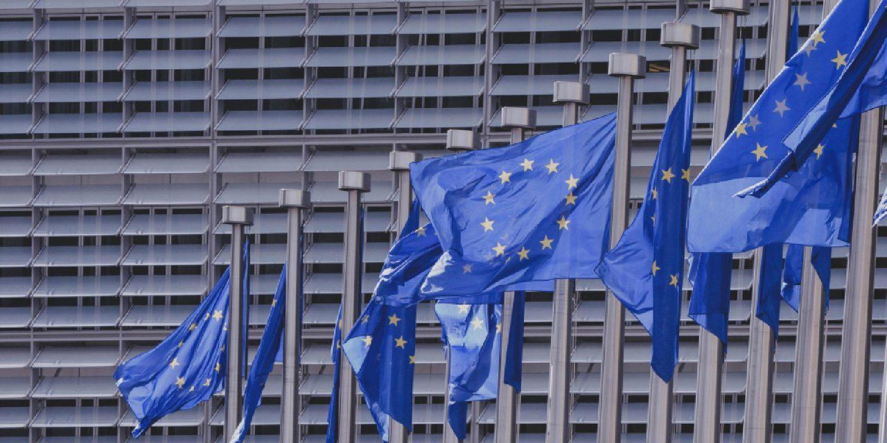 Flexwerk: de Europese Unie en de Lissabon Strategie