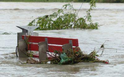 Common declaration on the catastrophic floods